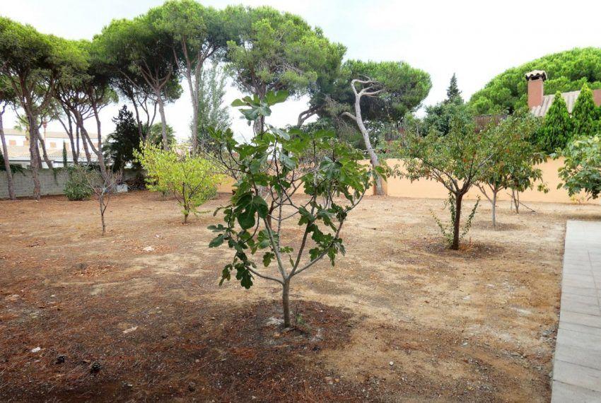 12-Chalet-La-Barrosa-C04499